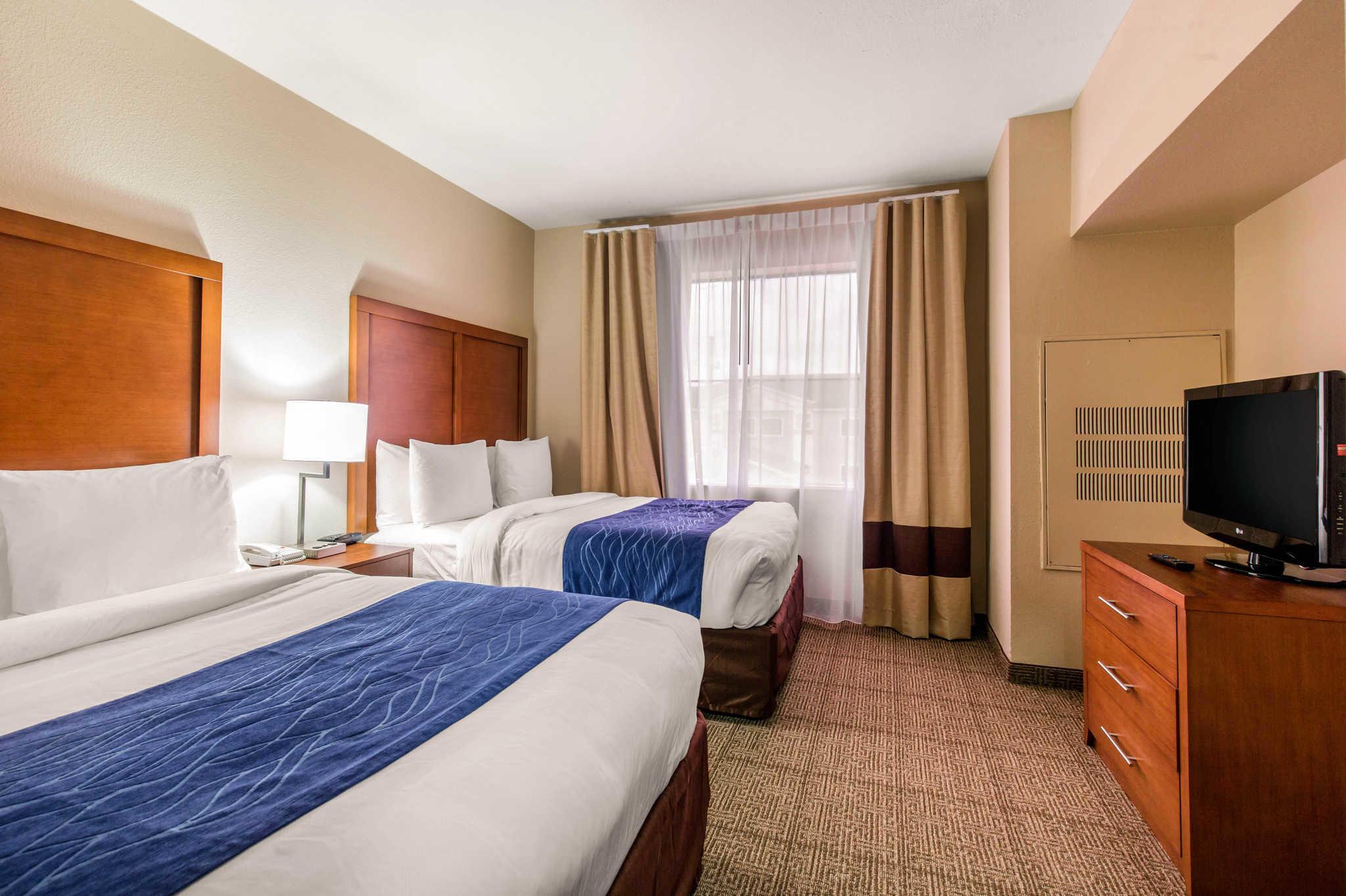Comfort Inn Amp Suites Iah Bush Airport East Humble Texas
