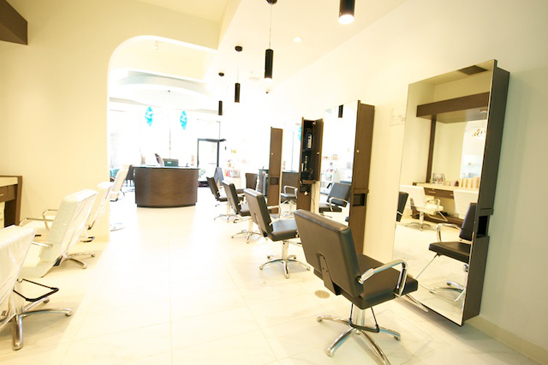 Blo salon newbury park hair salon in newbury park ca for Blo hair salon