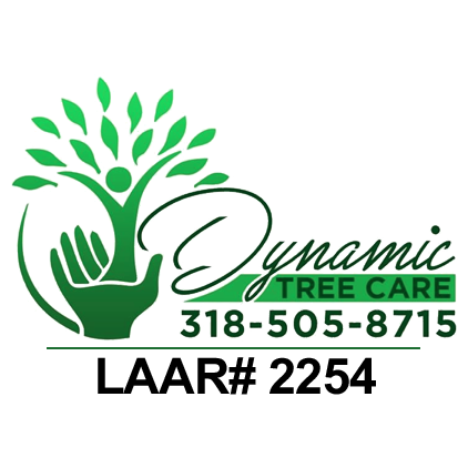 Dynamic Tree Care LLC