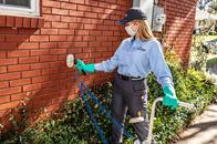 Image 10   HomeTeam Pest Defense