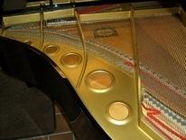 Aad Veldhuis Pianoverhuur