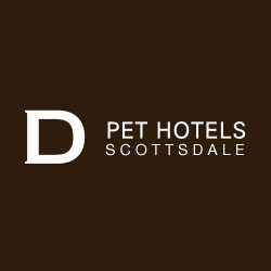 D Pet Hotels Scottsdale