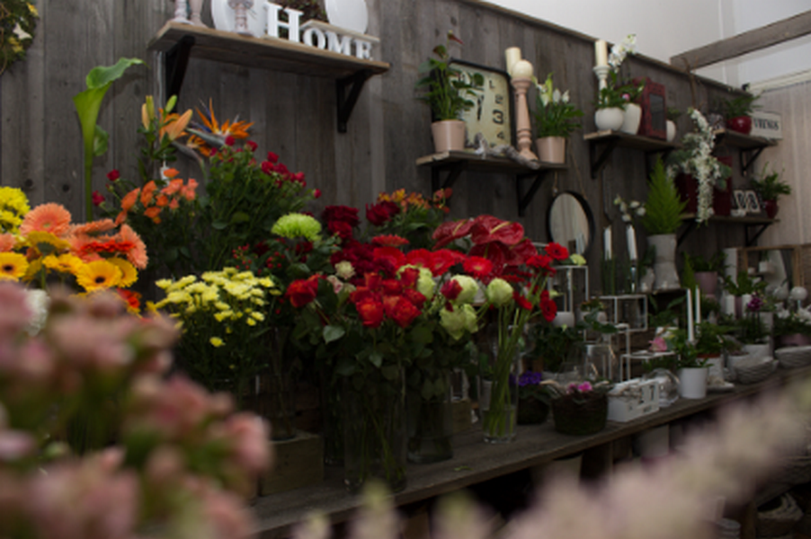 Květinové studio Petronila