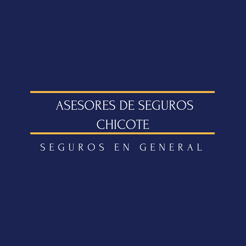 ASESORES DE SEGUROS CHICOTE