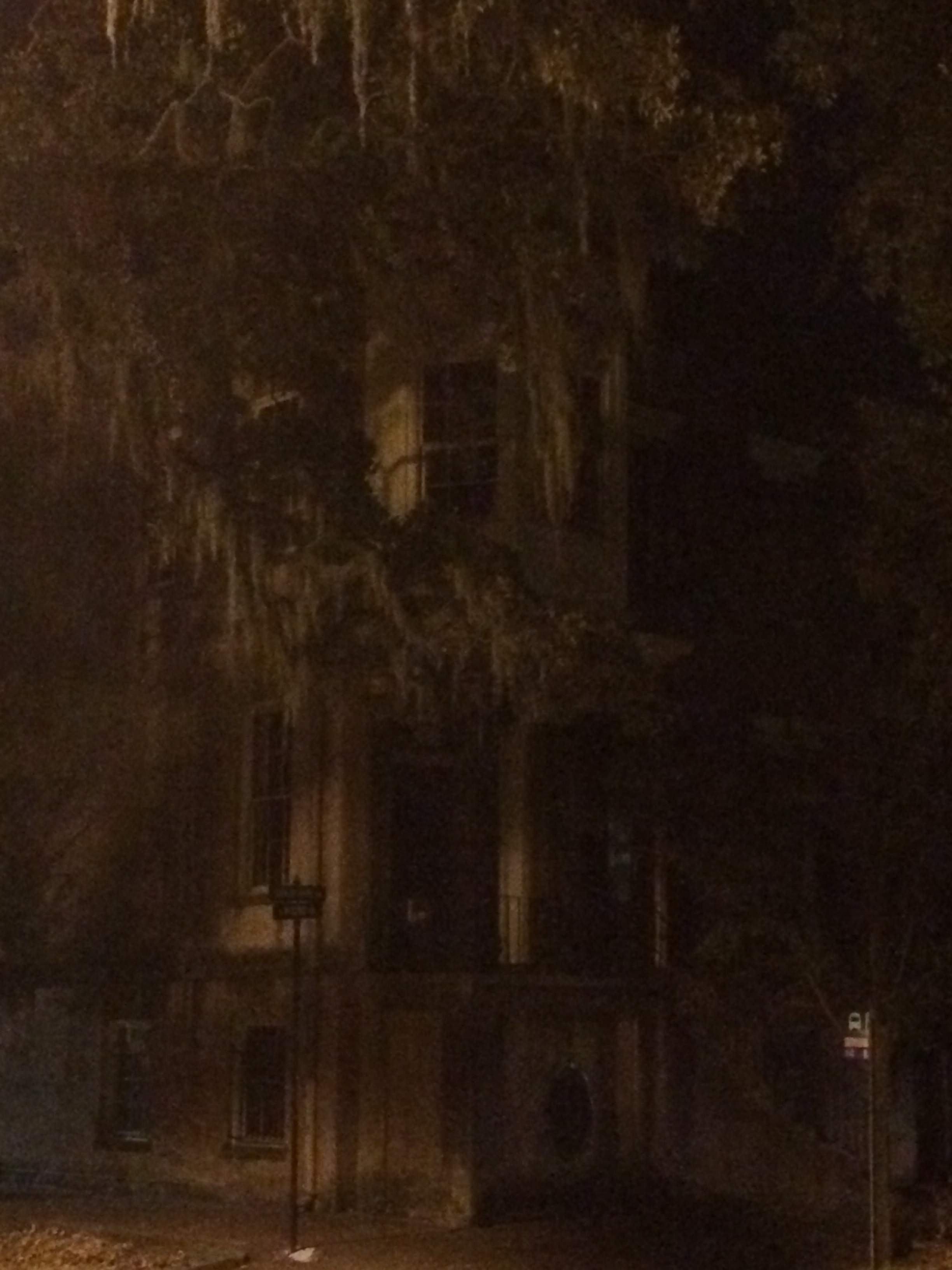 Best Savannah Ghost Tours Reviews