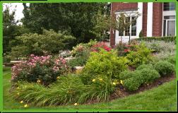 Greenleaf Garden Services image 3