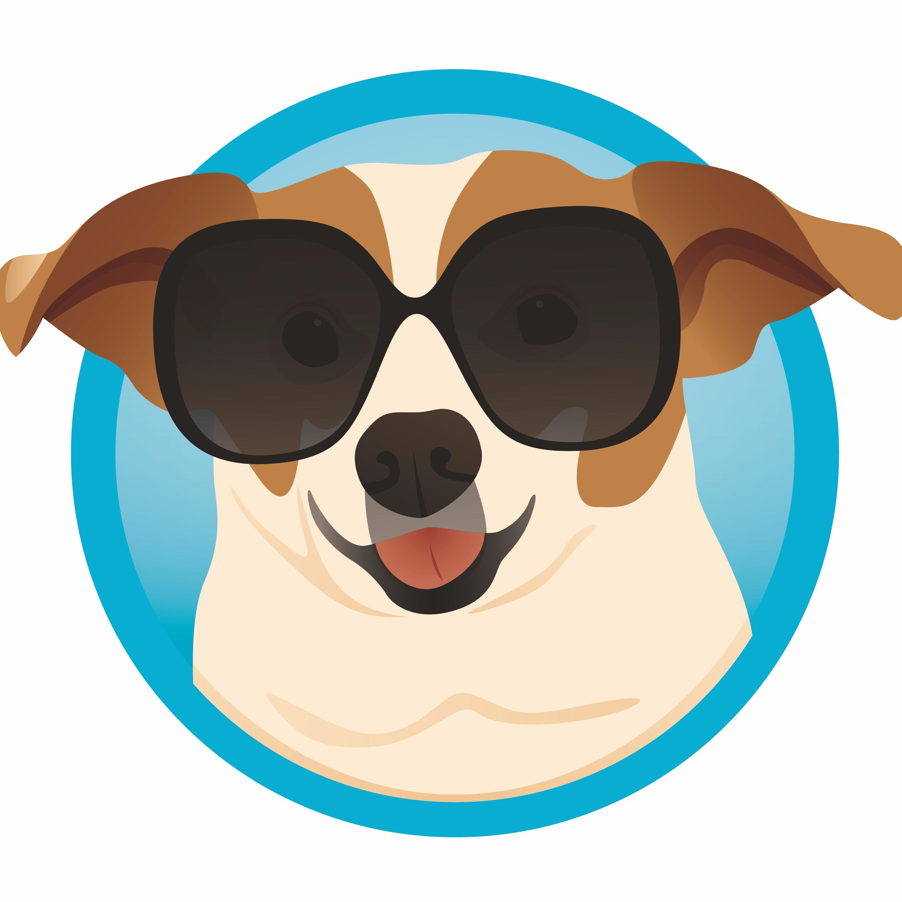 Power Pup Clean Seattle Washington Wa Localdatabase Com