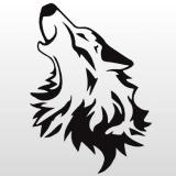 Wolfe Sound & Music