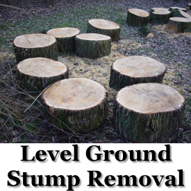 Level Ground Stump Removal