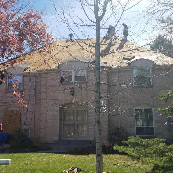 Apex Restoration And Roofing Centennial Colorado Co
