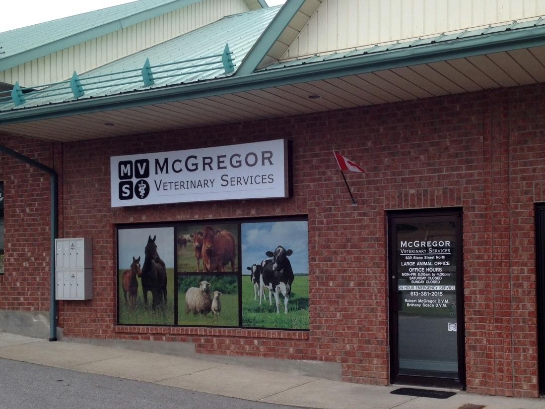 McGregor Veterinary Services in Gananoque