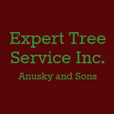 Expert Tree Service Inc