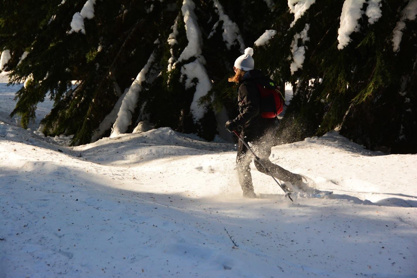 Snowshoeing Tronsen Meadows at Blewett Pass