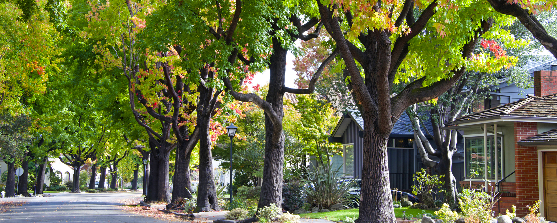 Victoria Roberts - Alaska Best Homes Real Estate