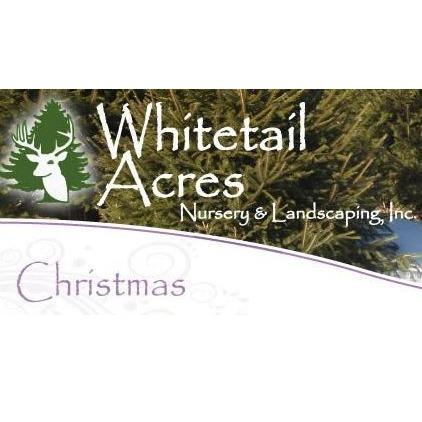 Whitetail Acres Choose & Cut Christmas Tree Farm