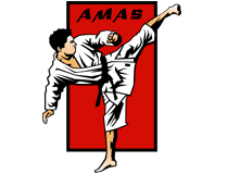 American Martial Arts Systems