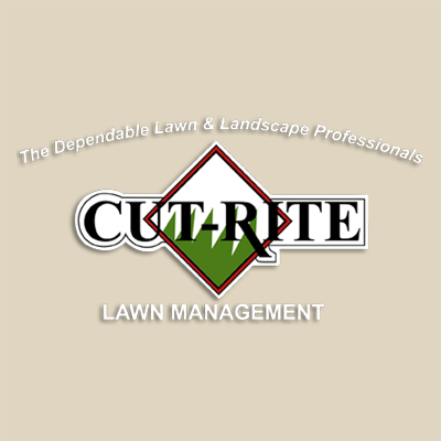 Cut-Rite Lawn Management