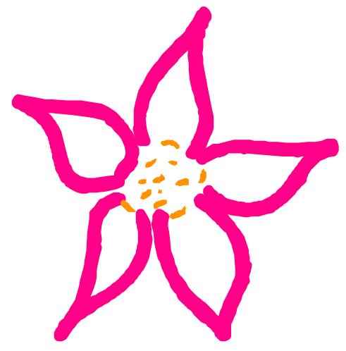 buds 'n bloom design studio, llc