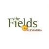 The Fields of Alexandria