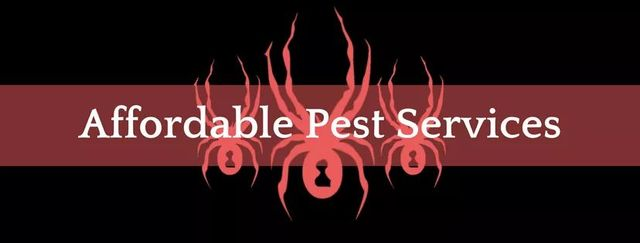 Affordable Pest Services