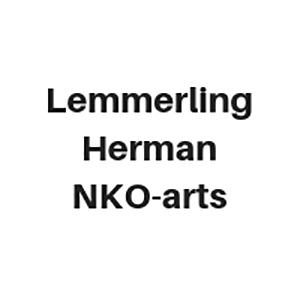 Lemmerling Herman NKO-arts