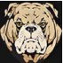 Bulldog Motors Llc
