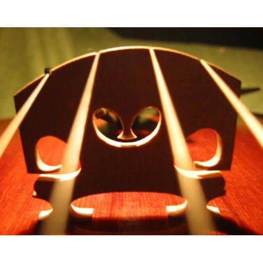Bild zu Geigenbauwerkstatt Christian Gehring in Bad Vilbel