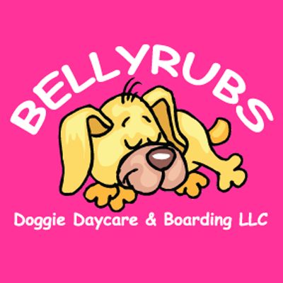 Bellyrubs Doggie Daycare & Boarding - Gansevoort, NY - Pet Grooming