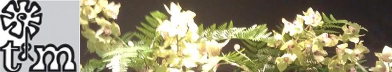Bloemenspeciaalzaak Timmermans & Mulder