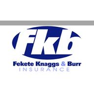 Fekete Knaggs & Burr Agency