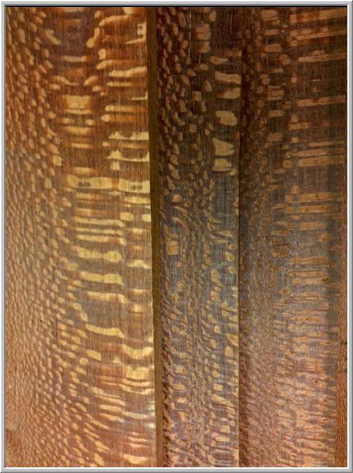 Condon Maurice L Co Inc Lumber image 8