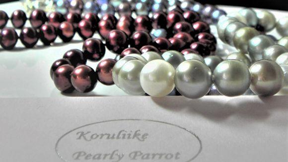 Koruliike Pearly Parrot