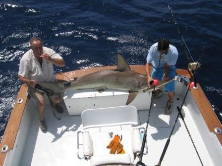 Fish bolo tm llc in pompano beach fl whitepages for Helen h deep sea fishing