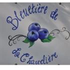 Bleuetière de la Chaudière à Saint-Patrice-De-Beaurivage