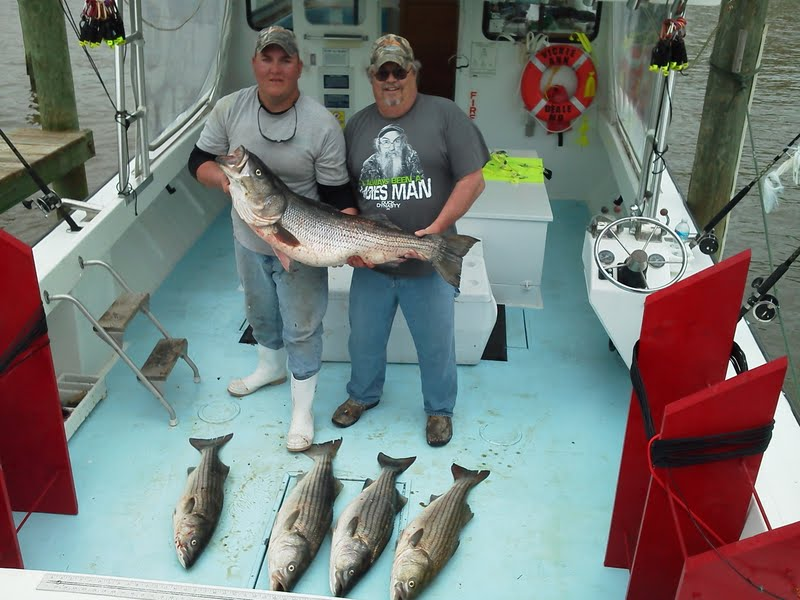 Herring bay charters llc in deale md 20751 for Deale md fishing charters