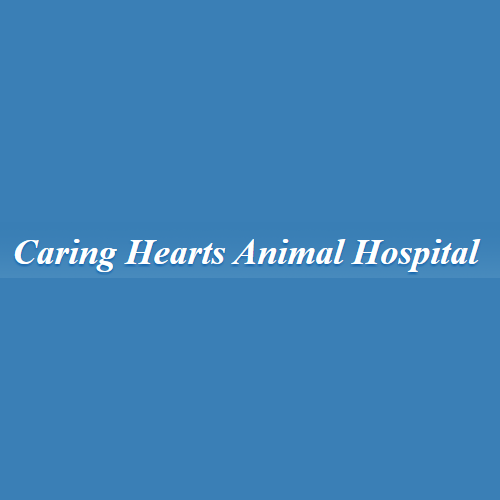 Caring Hearts Animal Hospital - Danville, IL - Veterinarians