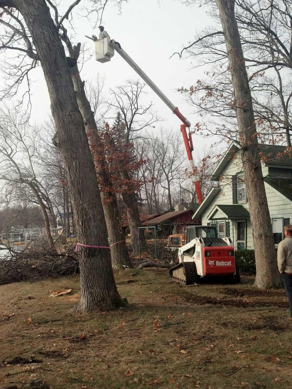 Pence Tree Service Fort Wayne