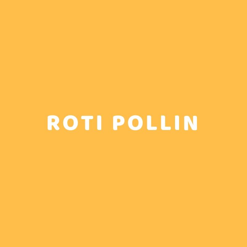 ROTI POLLIN