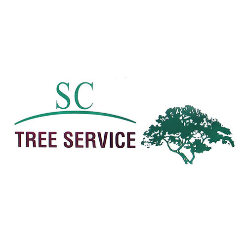 Kuttler's Tree Service - Penn Valley, CA 95946 - (530)432-9930 | ShowMeLocal.com
