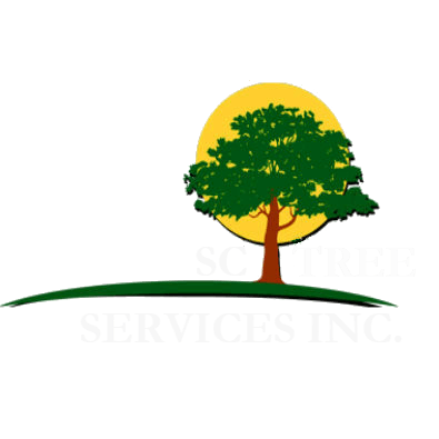 SC Tree Services Inc. - Compton, CA - Tree Services