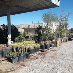 Plant Nursery in Henderson, NV