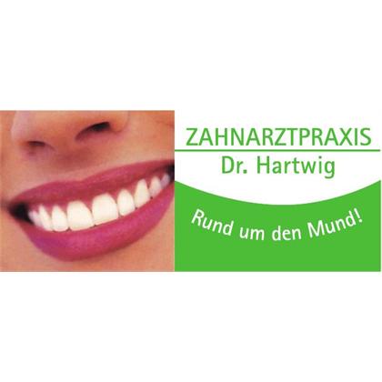 Bild zu Zahnarztpraxis Dr.med. dent. Markus Hartwig in Kelheim