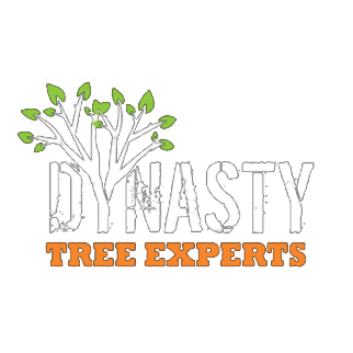 Dynasty Tree Experts, LLC
