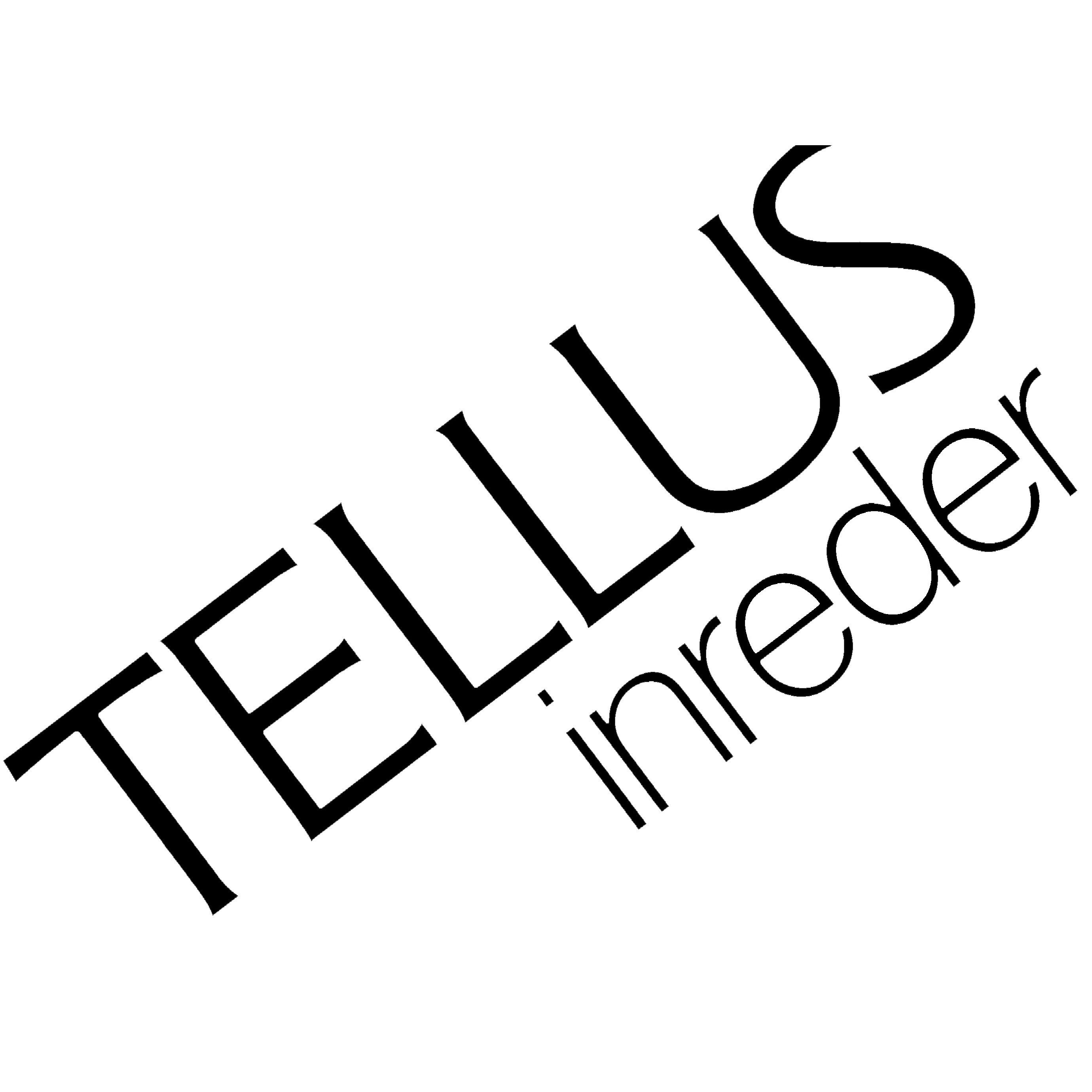 Tellus Interiör AB, Nya