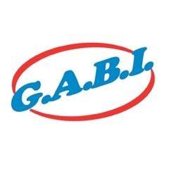 Bild zu G.A.B.I.Sömmerda in Sömmerda