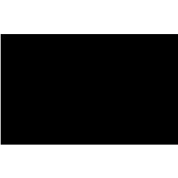 GANER + GANER CPAs PLLC