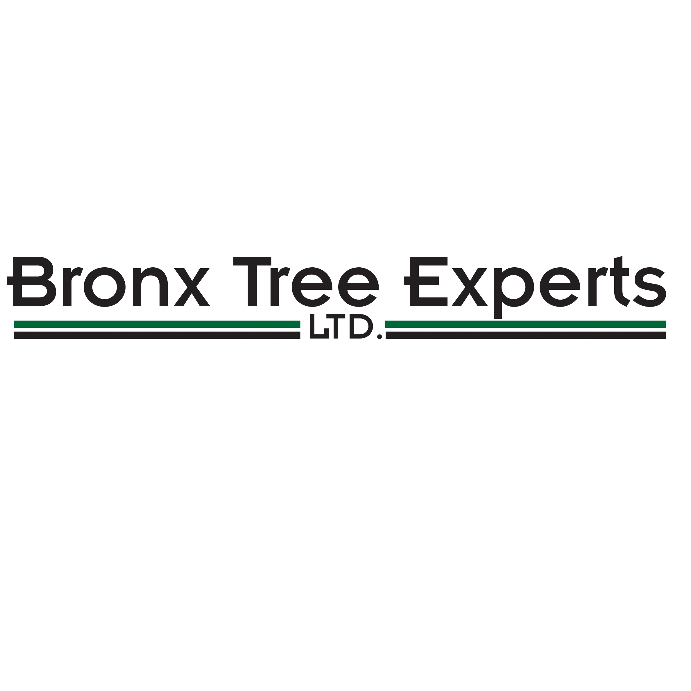 Bronx Tree Experts LTD