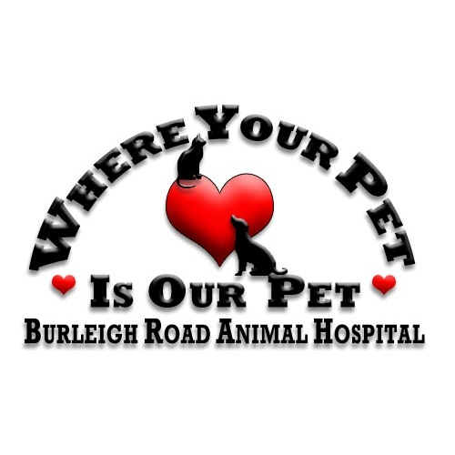 Burleigh Road Animal Hospital