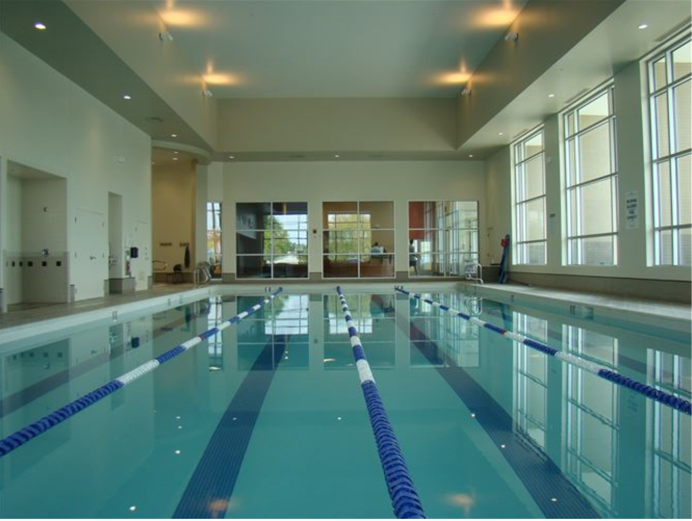 British Swim School North Dallas Plano Texas Tx