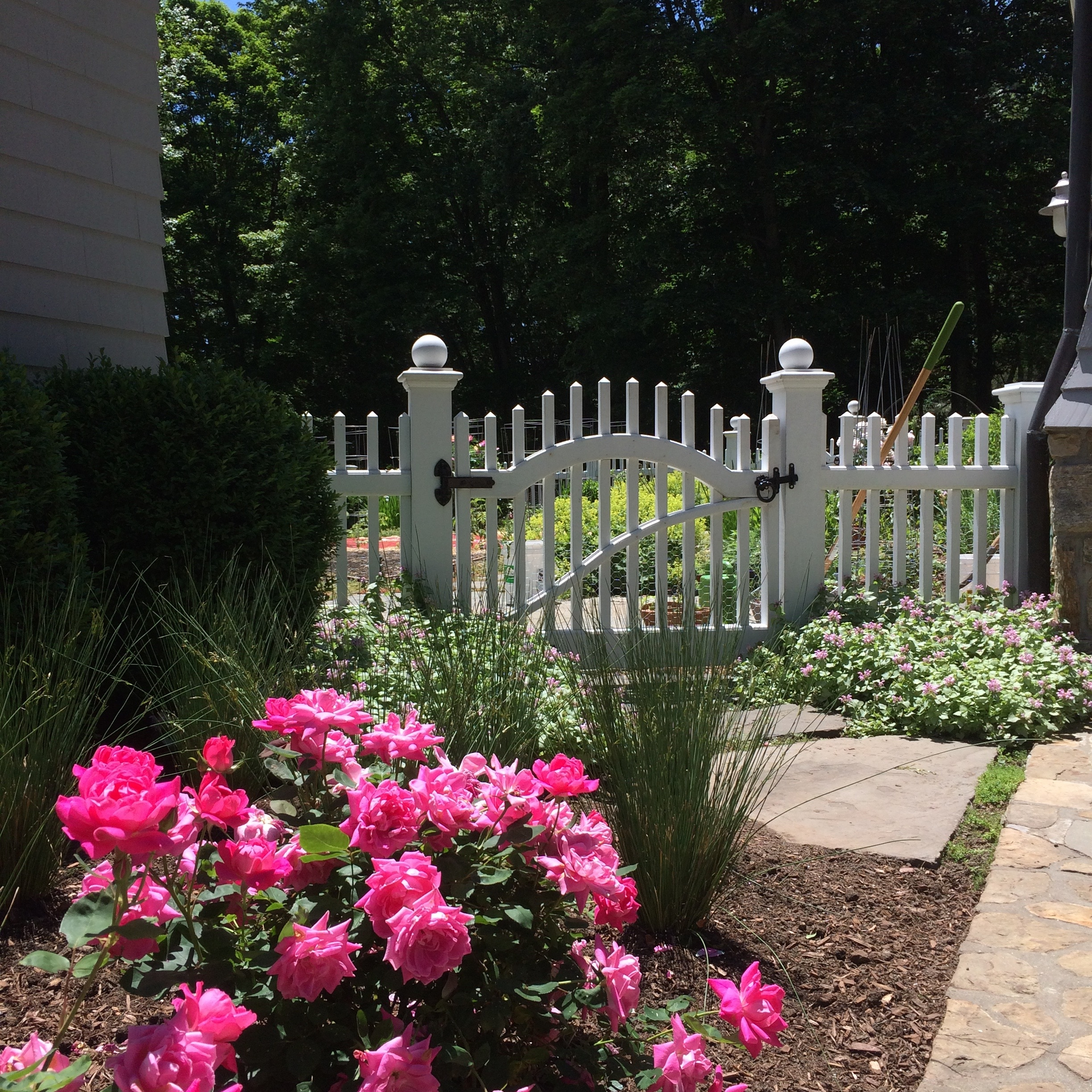 Colonial landscaping tree services in fairfield ct for Tree and garden services